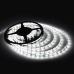Taśma LED rolka 5m