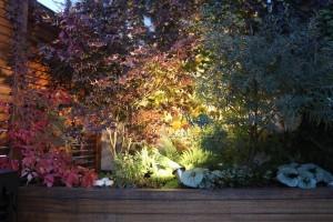 Oświetlenie LED roślin w ogrodzie