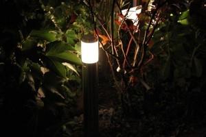 Oświetlenie roślin w ogrodzie. Lampa ogrodowa LED.