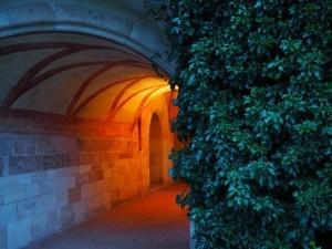Oświetlenie ogrodu. Ogrodowe dekoracje. Tajemniczy ogród