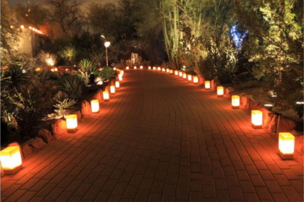 Świąteczne oświetlenie LED ścieżki na meksykańskim wzgórzu